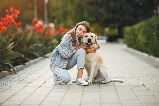 How Emotional Support Animal Can Quickly Boost Quality of Your Life